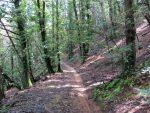 Parco Naturale del Monte Fenera