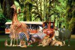 Pombia Safari Park