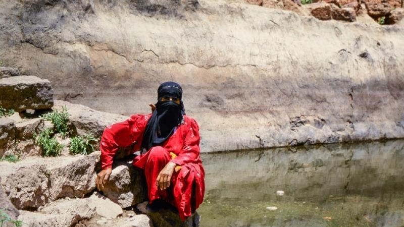 Safar: Viaggio in medio oriente