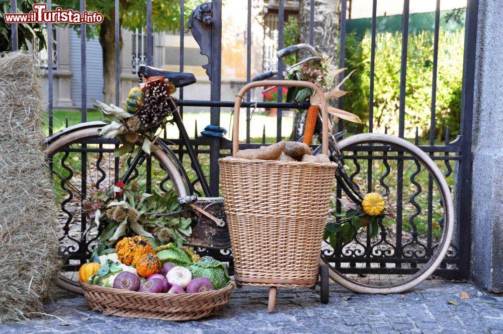 Fuori di Zucca: Sagra della zucca a Santa Maria Maggiore