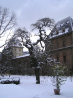 Orto Botanico – Torino